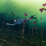 Cenote Carwash Freediving