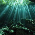 Cenote Freediving