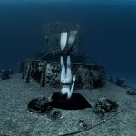 Freediver Shipwreck Cozumel Mexico