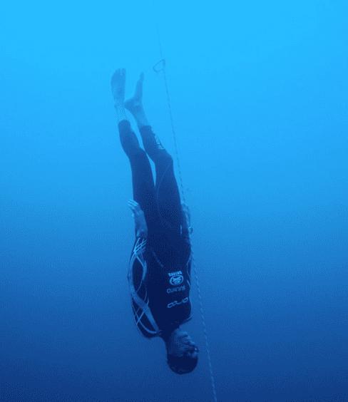 Freefall in Freediving (CNF) - William Trubridge