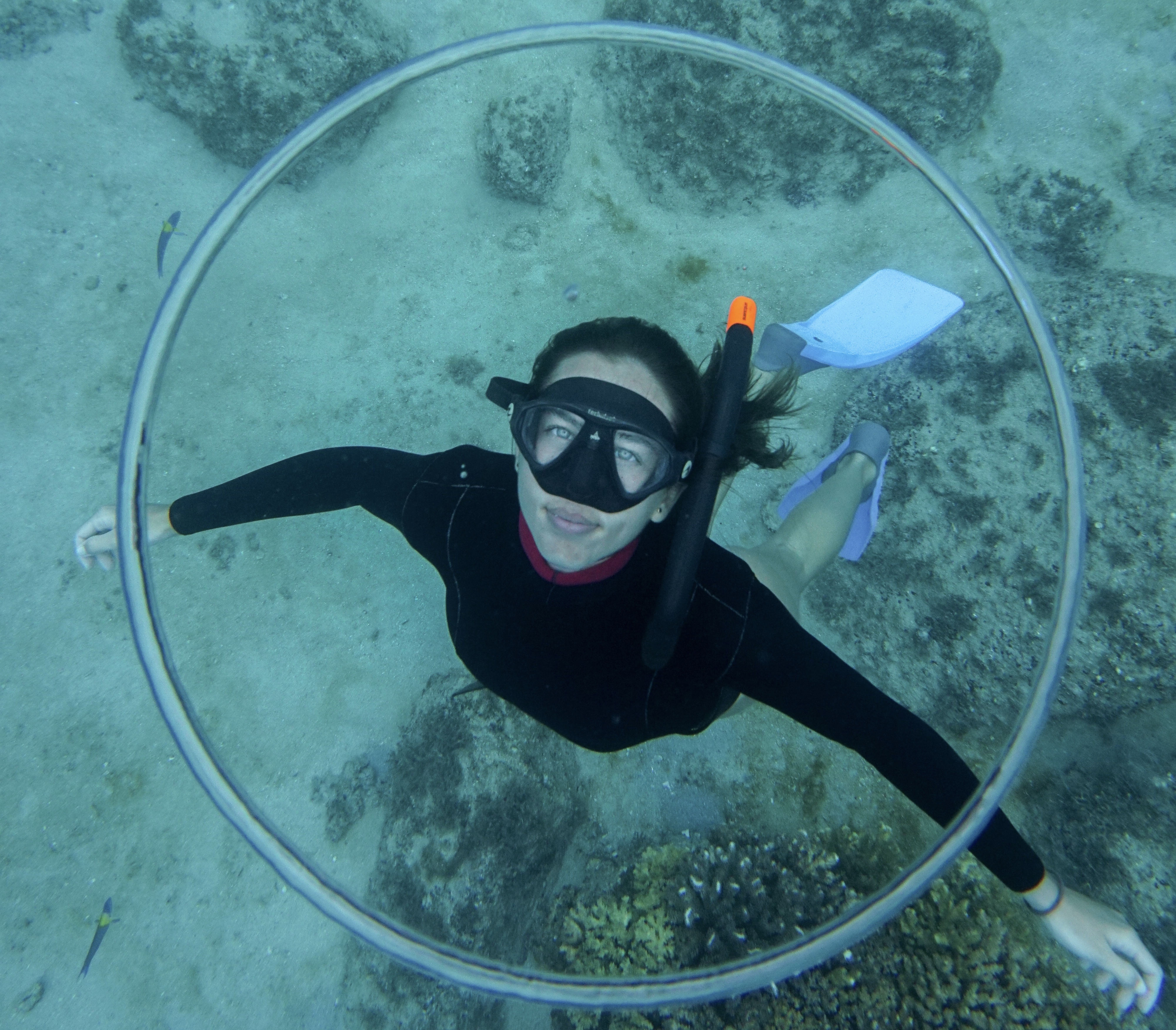 Freediving Discovery Course