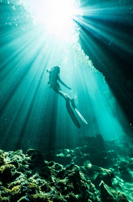 Cenote Expedition