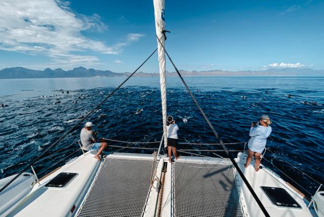 Sailing La Paz